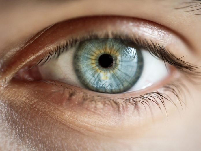 Robotic contact lens that allows users to zoom in by blinking eyes revealed by scientists – The Independent