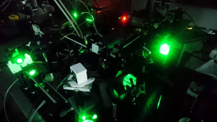 Tiny lensless endoscope captures 3-D images of objects smaller than a cell – Phys.org