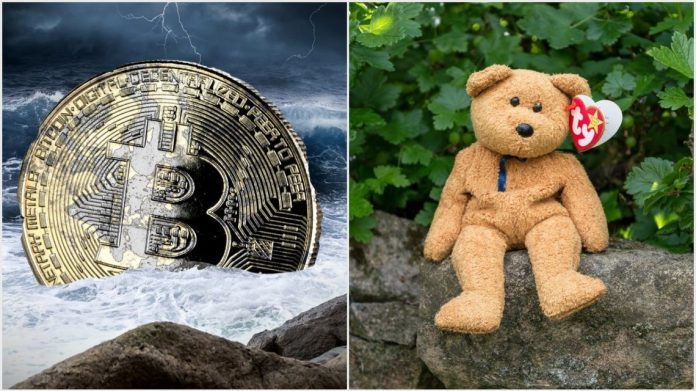 CNBC Trader Shades Bitcoin With Sarcastic 'Beanie Baby' Slam – CCN Markets