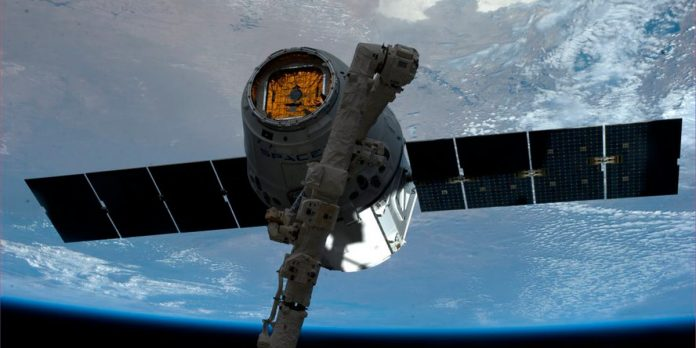 SpaceX Dragon carried 'mighty mice,' robot companion into space – Business Insider