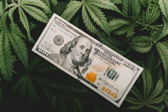 Recession-Proof Pot Stocks to Soar By 590,000%: Hedge Fund Manager