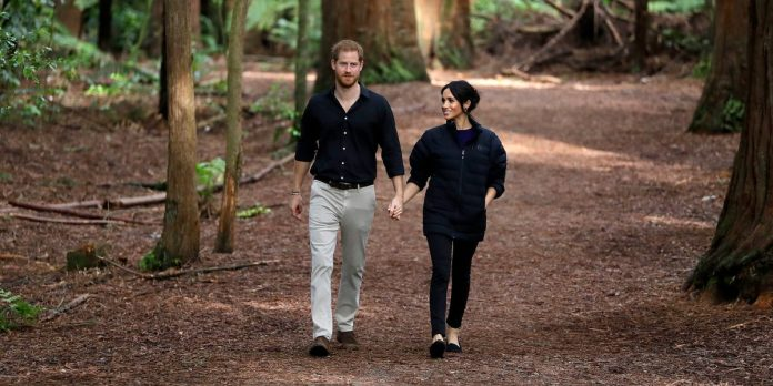 How much Prince Harry and Meghan Markle's private security costs – Business Insider