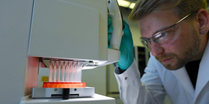 Dominant coronavirus strain genetically different, not more contagious – Business Insider