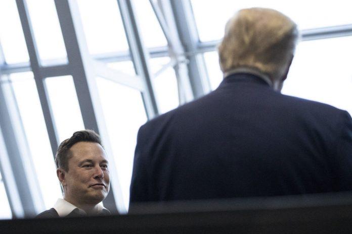 Tesla Needs Democrats to Break Up Big Tech or Amazon Will Eat Its Lunch