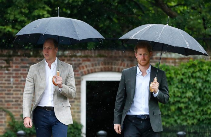 I Don't Believe Prince Harry & Prince William's Ridiculous Money Feud