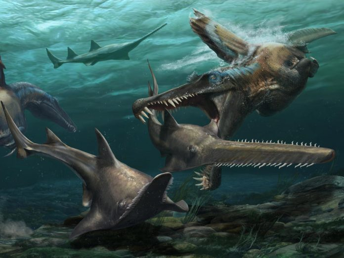 Case for 'river monster' Spinosaurus strengthened by new fossil teeth – National Geographic